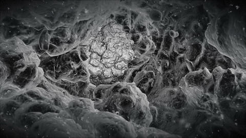 Electron Microscope View At The Alien Virus Stock Video Footage