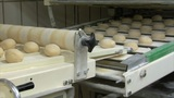 10728 roll bun on conveyor belt dolly wide Footage