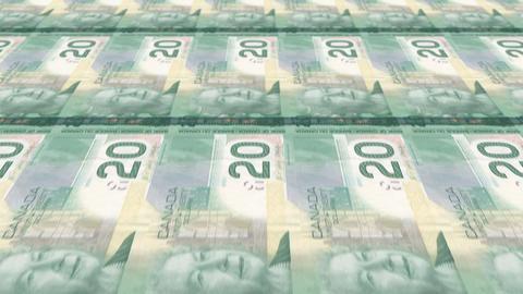 20 Canadian Dollars Animation