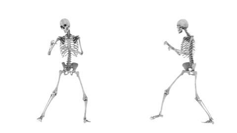 スケルトンのボクシング Animation