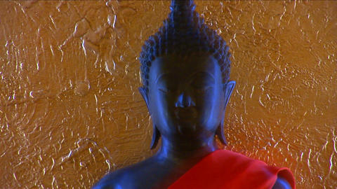 Buddha Stock Video Footage