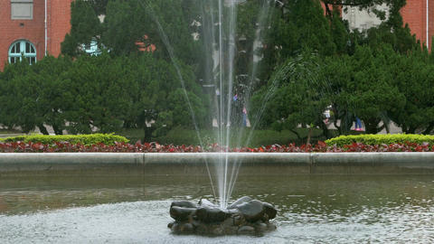 Fountain in pond 4K Live影片