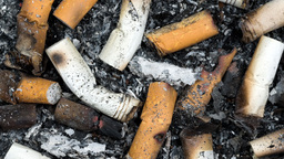 Cigarette butts and ashes Footage