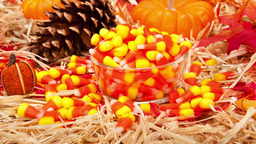 Candy Corn Thanksgiving setting Footage