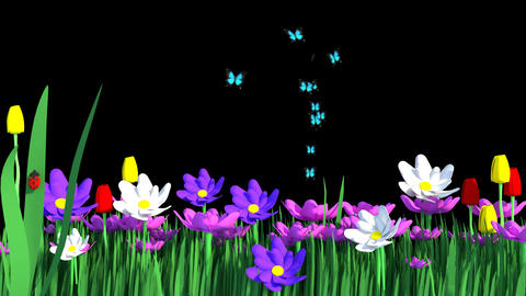 Springtime Flower Garden Animation