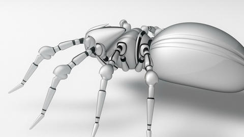 Robot Spider Animation