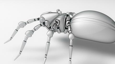 Robot Spider Animación