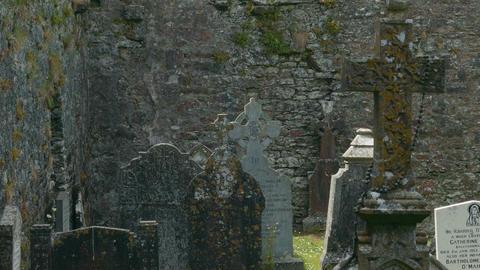 Kilcrea Friary, County Cork, Ireland - Graded Version Footage