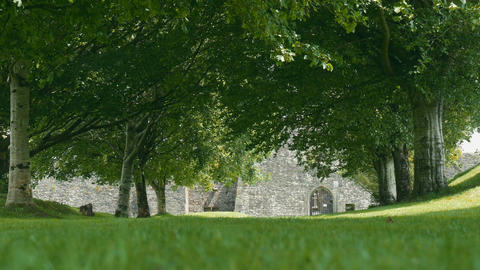 Kilcrea Friary, County Cork, Ireland - Graded Version Footage