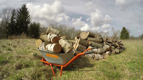 Wheelbarrow with firewood on spring field, time lapse Footage