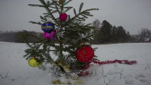 Christmas new Year tree on field in winter snowstorm Archivo