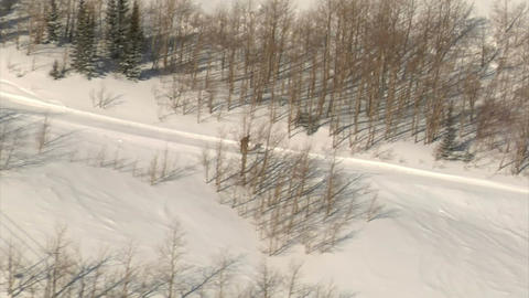 Aerial shot of skier and snowboarder on track Footage