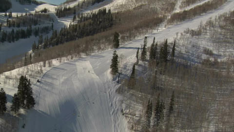 Aerial shot of skier and snowboarder with forest Footage