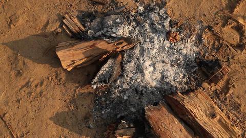 Campfire Ash Live Action