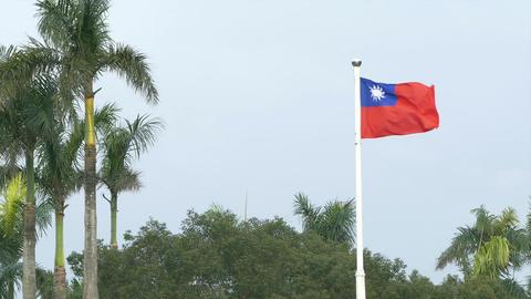 Taiwan flag on windy day Footage