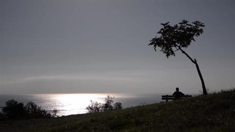 Man sits on a bench under a tree and watch the horizon over endless stretch of s Footage