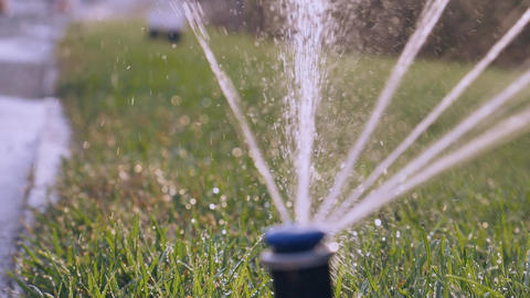 Automatic watering of grass Footage