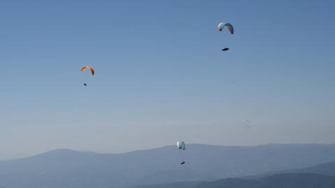 three paraglides flying in clear blue sky ビデオ
