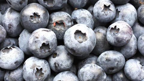 Closeup panning shot of fresh bilberry or blueberries, 4k Archivo