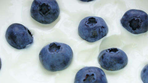 Closeup Blueberries in natural yogurt rotating. Seamless looping, 4k. Fruit Footage