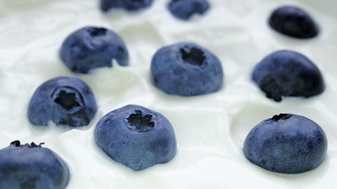 Closeup Blueberries in natural yogurt rotating. Seamless looping, 4k. Fruit Footage