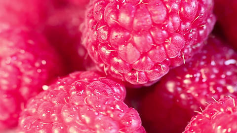 Juicy fresh raspberries rotating. Raspberries fruit background. Macro shot Footage