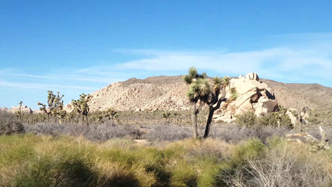 Joshua trees, Motion time lapse of rock piles in Joshua tree national park, in Footage