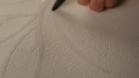 Macro Artist Draws Plant Logo Contour with Wet Brush on Paper Footage