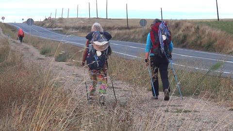 Pilgrim carrying a backpack in the baPilgrim carrying a backpack in the back, go Live Action