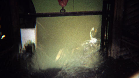 1971: Salmon fish swimming through narrow ladder locks Footage
