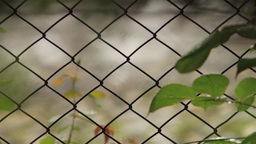 Spring Rain Seen Through A Mesh Fence With Sharf Change On Paved Yard Behind Him stock footage