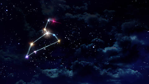05 Leo horoscopes of zodiac sign night Animation