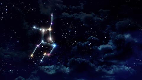 06 Virgo Horoscopes night Animation