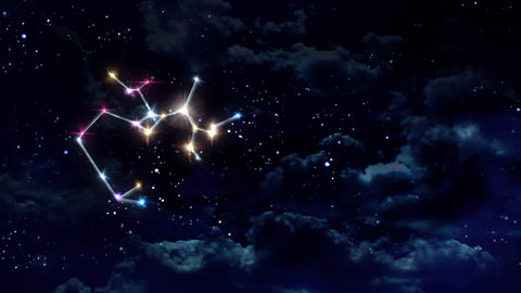 09 Sagittarius horoscopes of zodiac sign night Animation