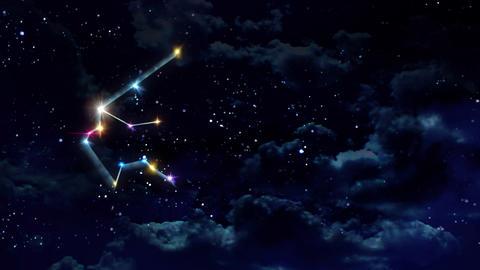 11 Aquarius horoscopes of zodiac sign night Animation