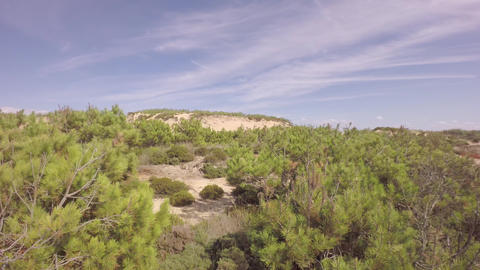Aerial view over ocean grass sand dunes at sunny day - Portugal Footage