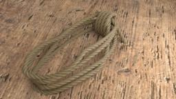 Coiled Rope 3Dモデル