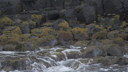 Water Splashing On Basalt Stones, Giant Causeway, Northern Ireland - 200fps Real Footage