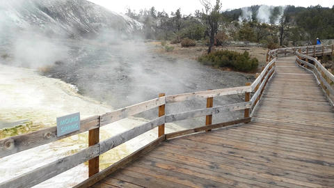 Handheld view of mound spring, at mammoth hot springs, in Yellowstone national Live Action