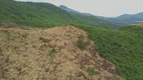 Camera Flies above Felled Terrain against Landscape Sky Footage