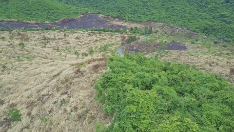 Aerial View Vietnamese Highland with Felled and Jungle Terrains Footage