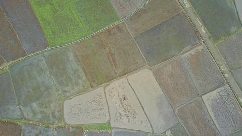 High Aerial View on Boundless Rural Landscape Footage