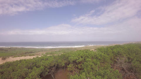 Aerial view over ocean grass sand dunes at sunny day with ocean in the backgroun Live Action