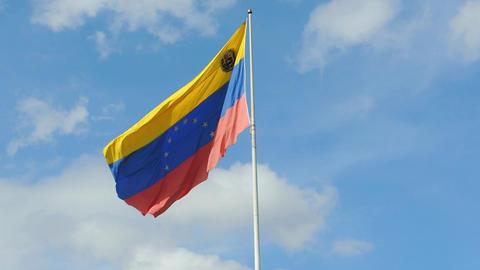 Venezuela Flag Image