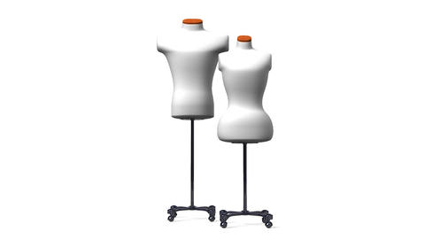 Display Mannequins On White Background Animation