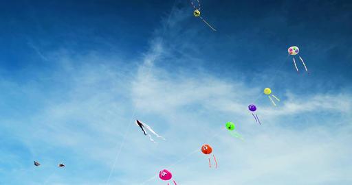 Kites on a Kite Festival in St. Peter-Ording, Germany ビデオ