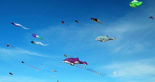 Kites on a Kite Festival in St. Peter-Ording, Germany ビデオ