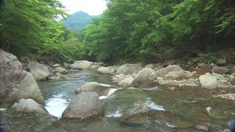 Tanzawa ビデオ