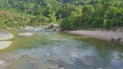 Drone Moves over River with Rapids between Jungle Banks Footage