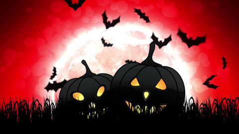 Halloween Pumpkins in Red Background Animation